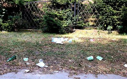 A po Audioriver… zostały tylko śmieci